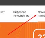 Подключение на сайте NetByNet